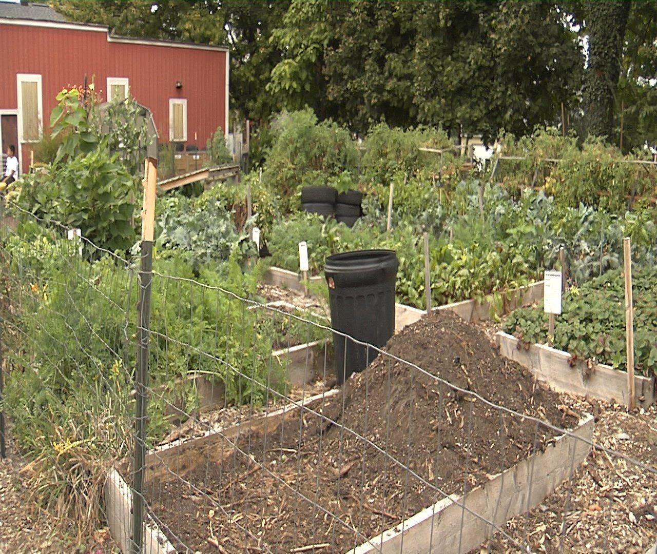 Urban Garden on West 19th Street in Erie