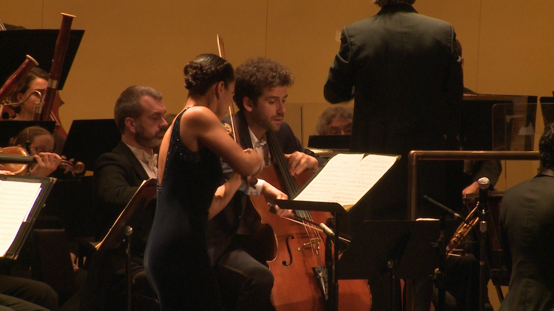 Trio of guest soloists join Erie Philharmonic for Beethoven's triple concerto