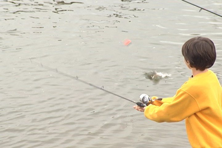 Fish and boat commission warns legislators of potential for Pa fish and boat