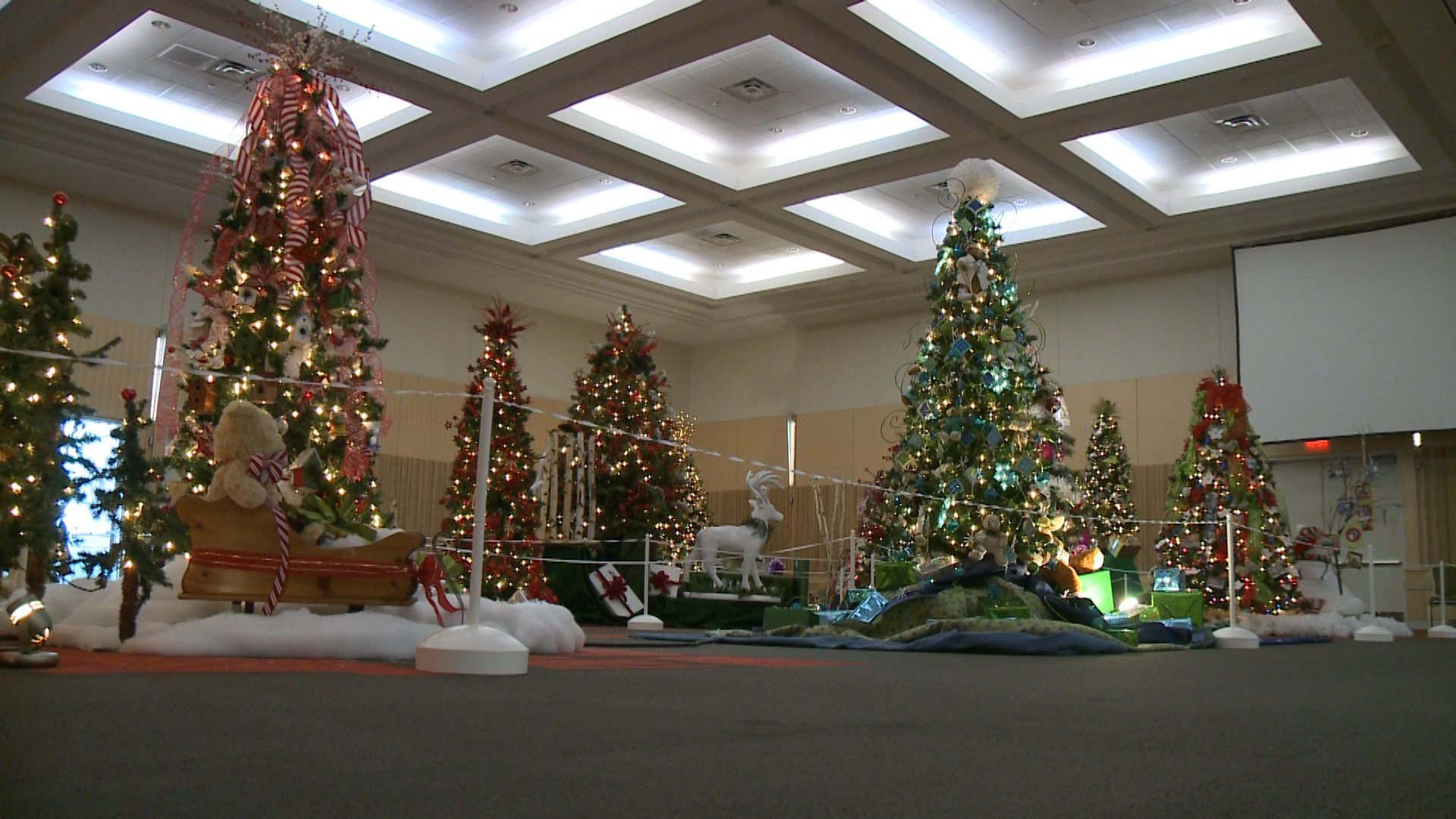 28 best christmas trees erie pa the gallery for gt for Michaels craft store erie pa