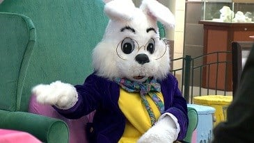 Fairway Auto Center >> Easter Bunny Sex Offender Spurs Questions regarding Background Checks - Erie News Now | WICU and ...