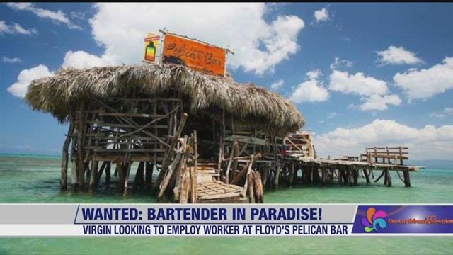 Looking for a Unique Summer Job? How 'Bout One in the Middle of the Caribbean Sea?