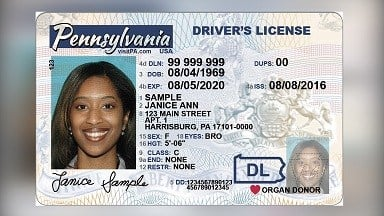 copy of drivers license pa