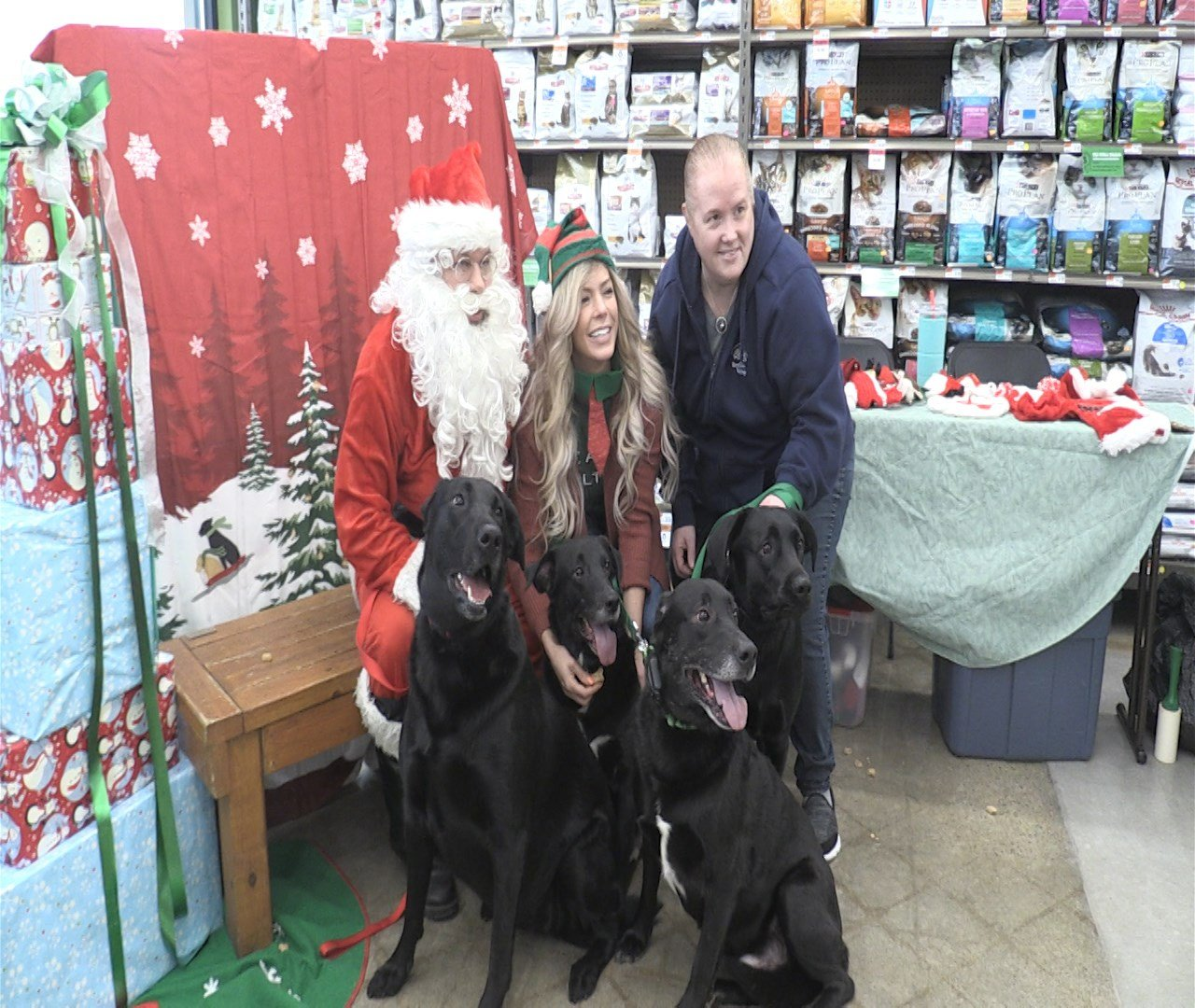 Pet Pictures With Santa Erie News Now Wicu And Wsee In Erie Pa
