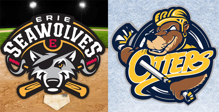 erie seawolves  otters issue statements on interrupted