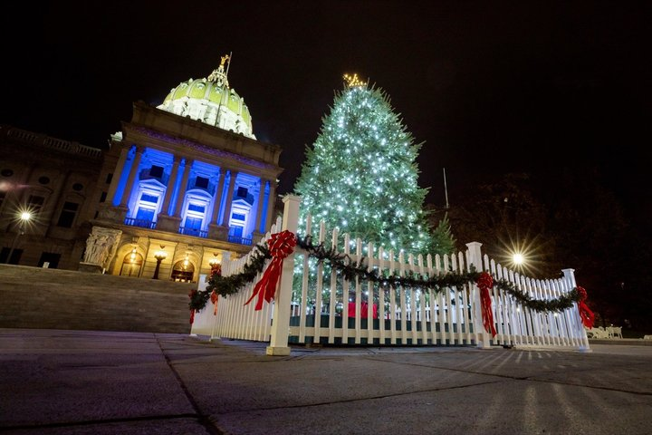 Gov. Wolf Lights 2020 Capitol Christmas Tree   Erie News Now